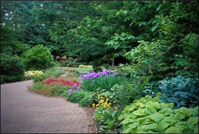 Perennial_garden